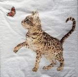 Chat fleuri multicolore