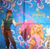 Princesse raiponce et son prince boutique www - Raiponce et son prince ...