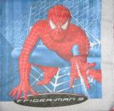 Spiderman 3, tour gris